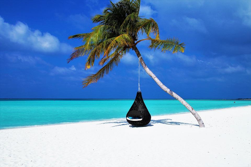 Comment sauver la mer des Caraïbes?